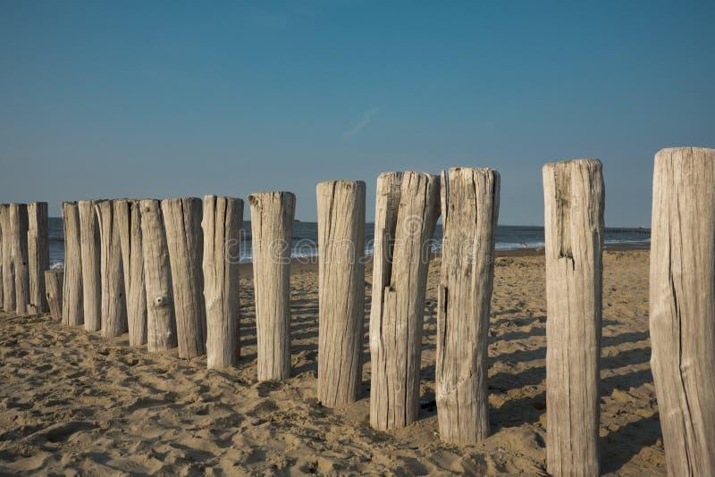 Wiosłuje falochrony w piasku, Cadzand Zły holandie obrazy stock