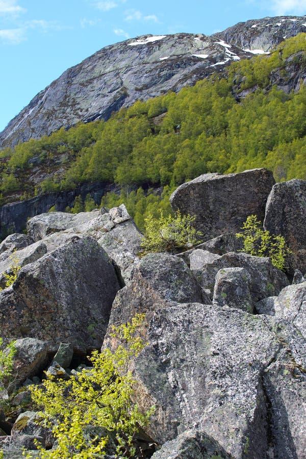 Wiosen góry Norwegia zdjęcie stock