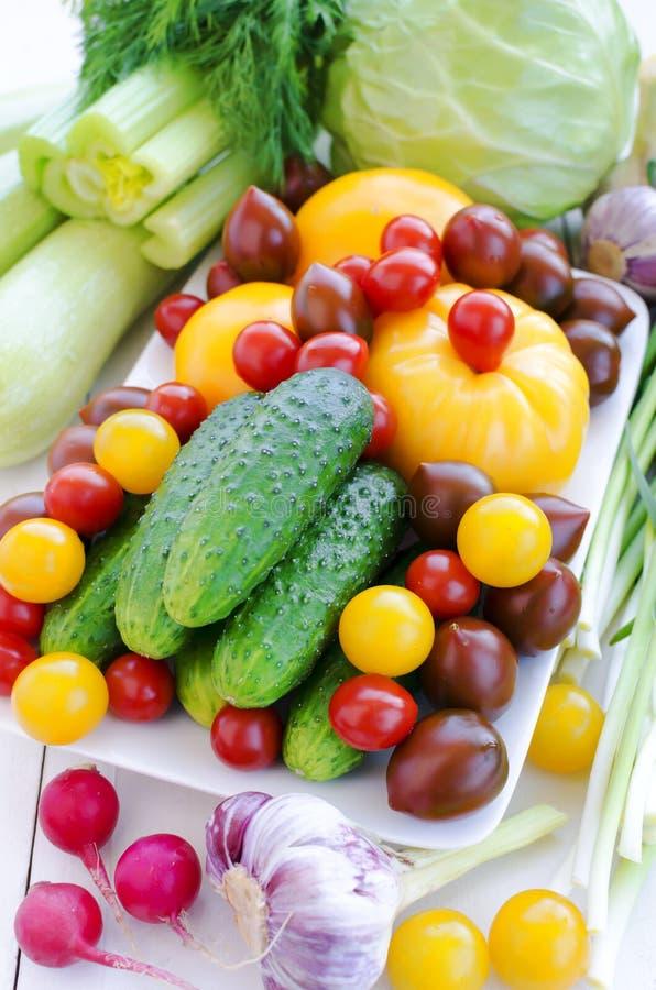 Wiosen warzywa: Ogórki, różnorodni pomidory, czosnek, seler, kabaczki, kapusta, świerząbek, koper, czosnek, zielony czosnek, wiosn zdjęcie stock