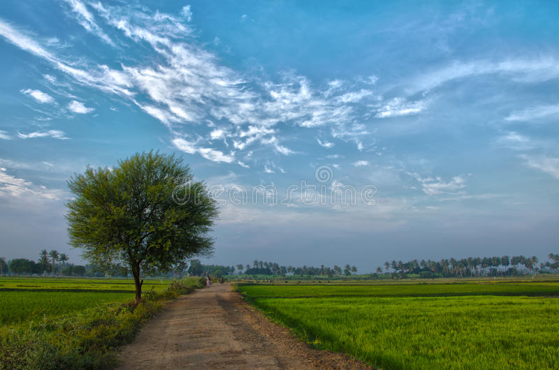 Wioska krajobraz obrazy stock