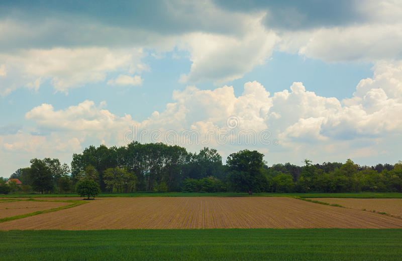 Wioska krajobraz w wiośnie fotografia royalty free