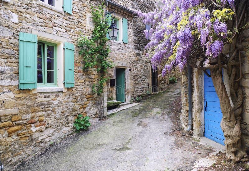 Wioska Provence: spadać kaskadą purpurowego żałość winogradu obrazy royalty free