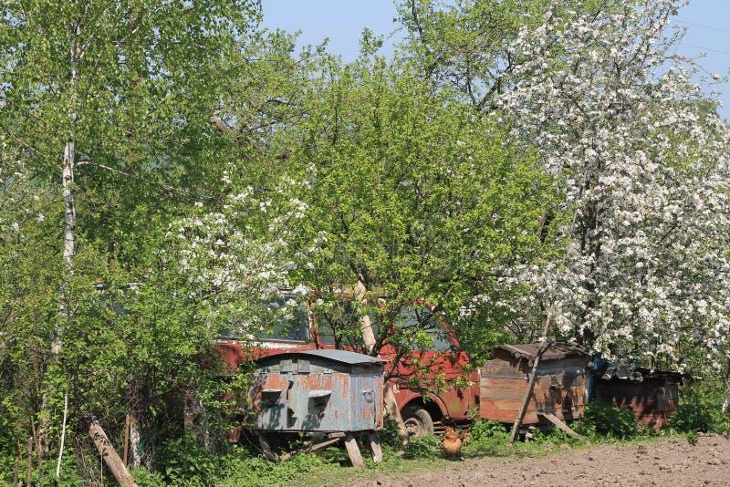Wioska w Ucraine obraz royalty free