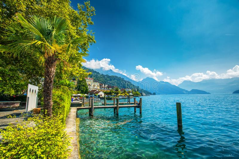 Wioska Weggis, jeziorna lucerna Vierwaldstatersee, Rigi Alps w tle blisko sławnego lucerny Luzern miasta, halni i Szwajcarscy zdjęcie stock