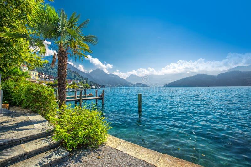 Wioska Weggis, jeziorna lucerna Vierwaldstatersee, Rigi Alps w tle blisko sławnego lucerny Luzern miasta, halni i Szwajcarscy fotografia stock