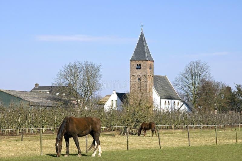Wioska widok z antycznym kościół, koniami i owocowym jardem, zdjęcia royalty free
