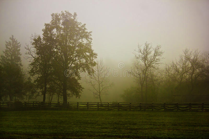 Wioski sceneria w ranek mgle obrazy stock