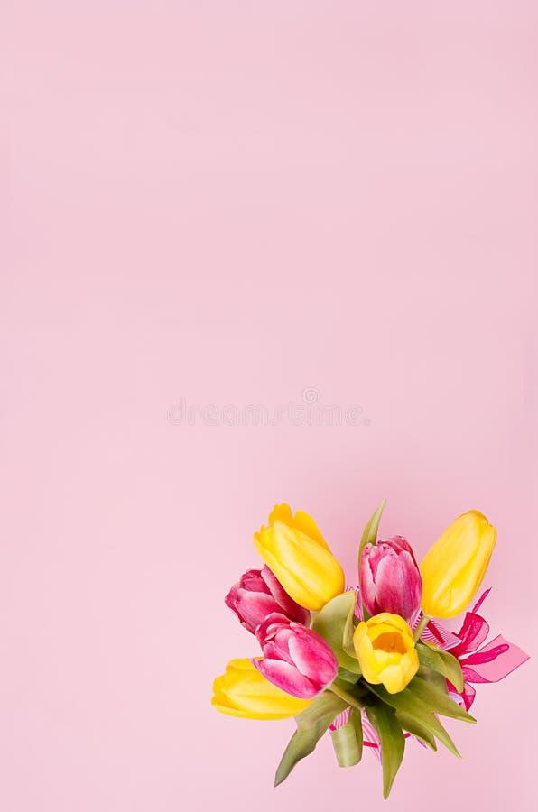 Wiosna świezi tulipany kolory żółci i czerwień bukiet na pastelowych menchii tle fotografia stock