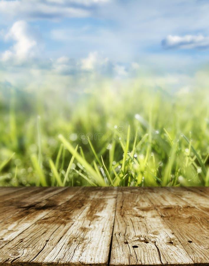 Download Wiosna zdjęcie stock. Obraz złożonej z greenbacks, gazon - 41952800