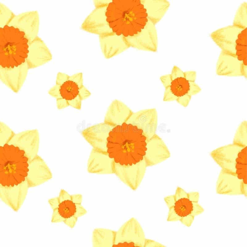 Wiosna bezszwowy wzór - narcyza jonquil daffodil kwiatu nakreślenie dla mody ilustracji, druk, plakat, sztandar, notatnik, ilustracja wektor