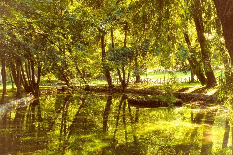 Wiosna Bosna rzeka zdjęcie stock