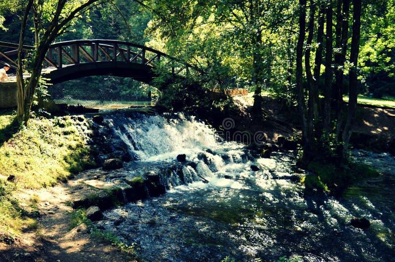 Wiosna Bosna rzeka fotografia stock