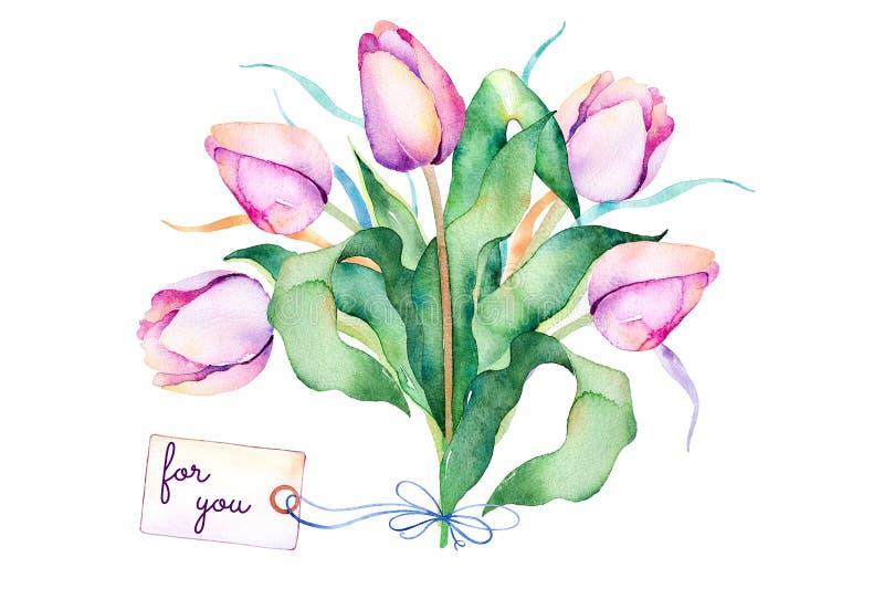 Wiosna bukiet z gałąź, delikatni purpurowi tulipany, liście ilustracji