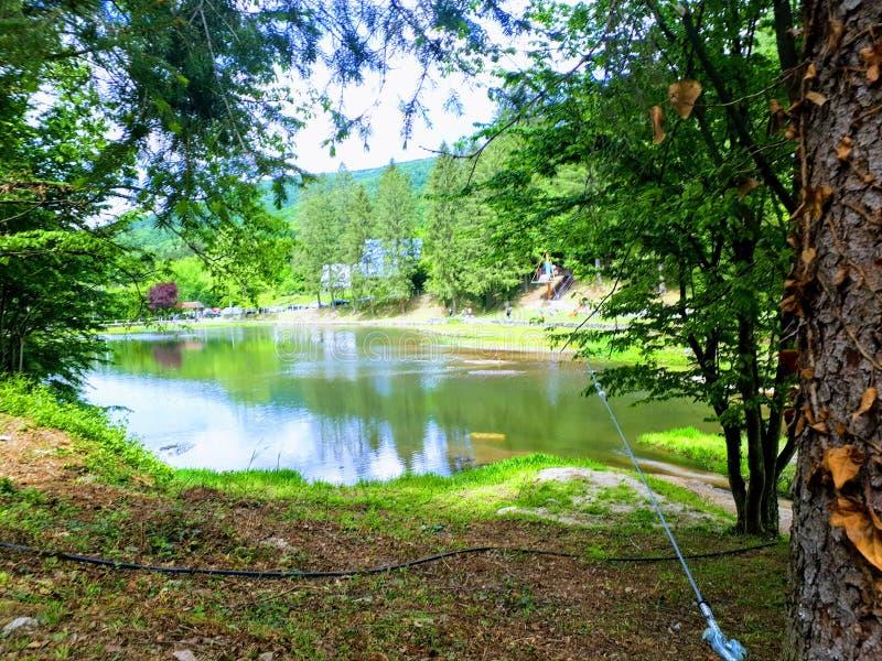 Wiosna jezioro Jastrebac obraz royalty free