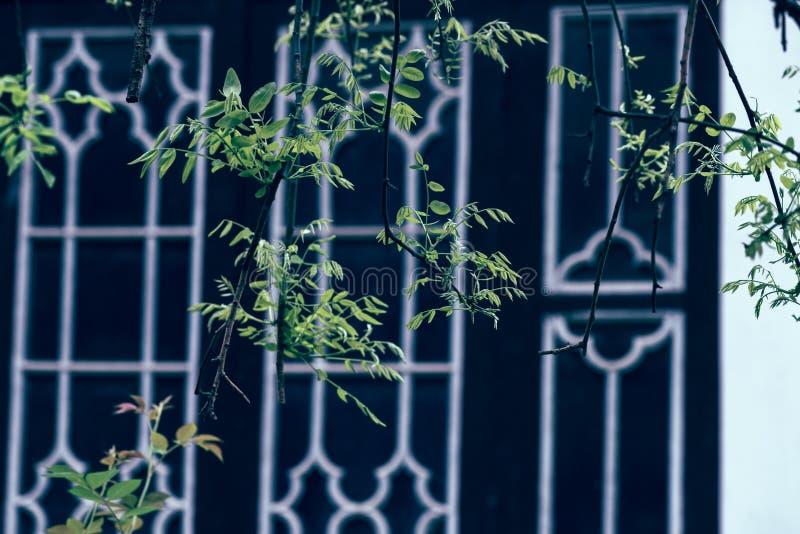 Wiosna klasyczni ogródy Suzhou fotografia royalty free