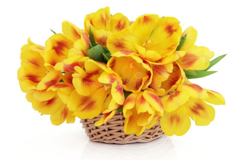 Download Wiosna Kosz zdjęcie stock. Obraz złożonej z piękny, czerwień - 27341518