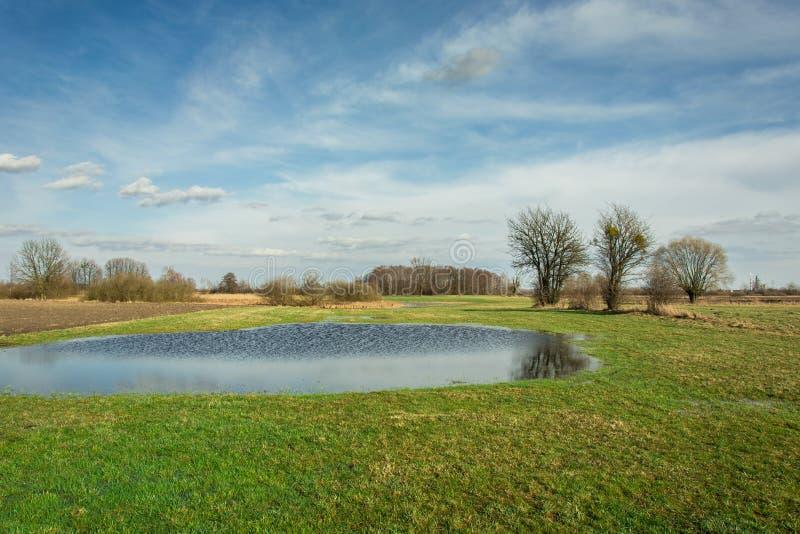 Wiosna krajobraz łąka, woda i niebieskie niebo, po tym jak deszcz obraz royalty free