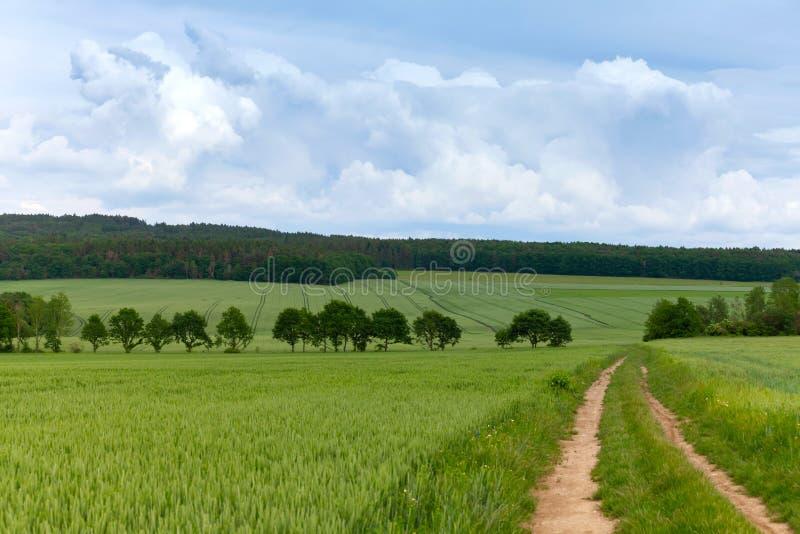 Wiosna krajobraz, droga przemian z chmurnym niebem obrazy royalty free