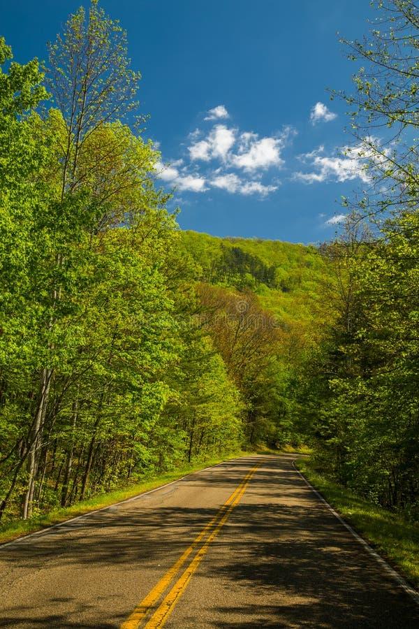 Wiosna krajobraz na pogórza Parkway fotografia stock