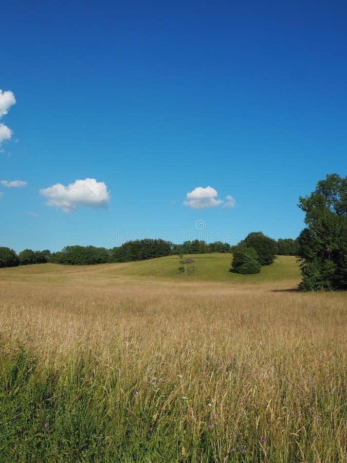 Wiosna krajobraz w jurze, Francja zdjęcia stock