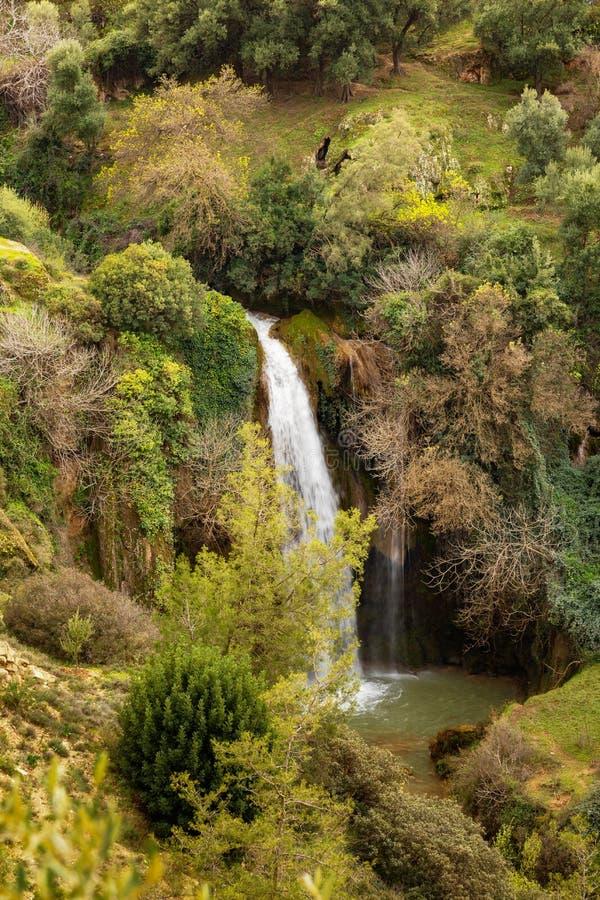 Wiosna krajobraz w Parc Obywatel De Tazekka, Maroko fotografia stock