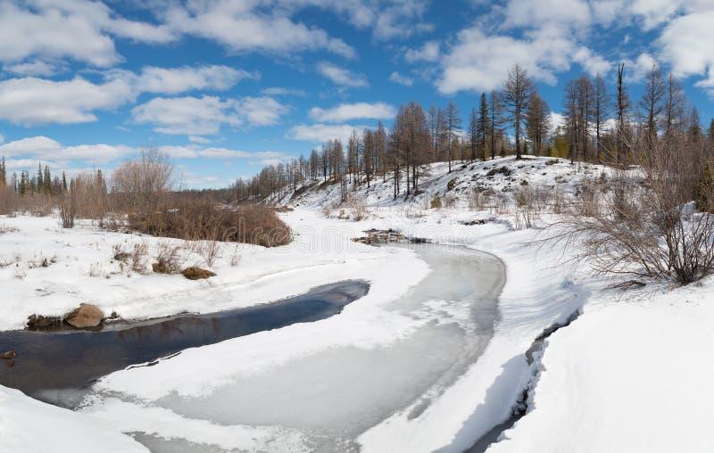 Wiosna krajobraz w Południowym Yakutia, Rosja fotografia stock