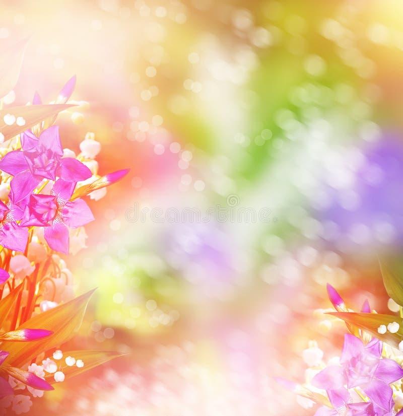 Wiosna krajobraz z kwiat lelują dolina fotografia stock