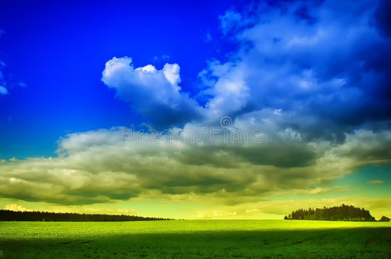 Wiosna krajobraz z zielonym przedpolem obraz stock