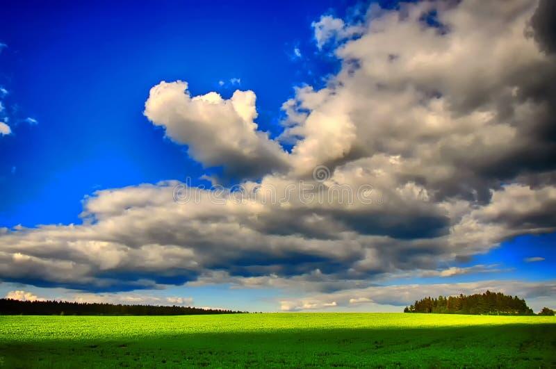 Wiosna krajobraz z zielonym przedpolem zdjęcie royalty free