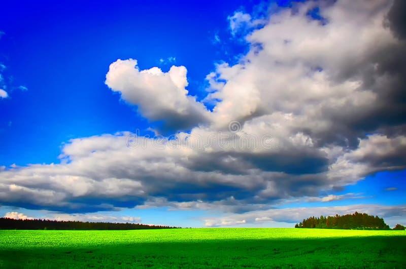 Wiosna krajobraz z zielonym przedpolem fotografia royalty free