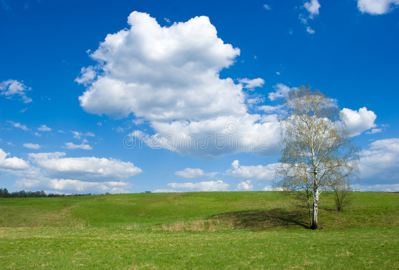 wiosna krajobrazowa zdjęcia royalty free