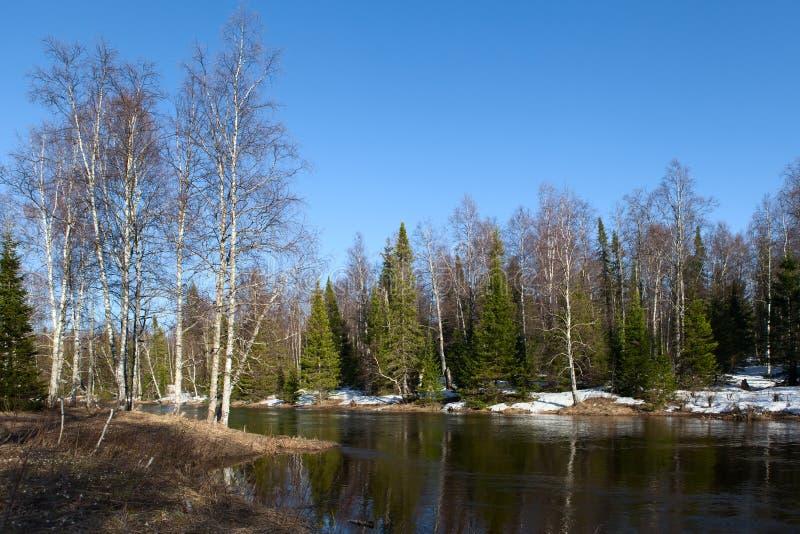 Wiosna krajobrazowy Inzer Rzeczny Południowy Ural fotografia stock