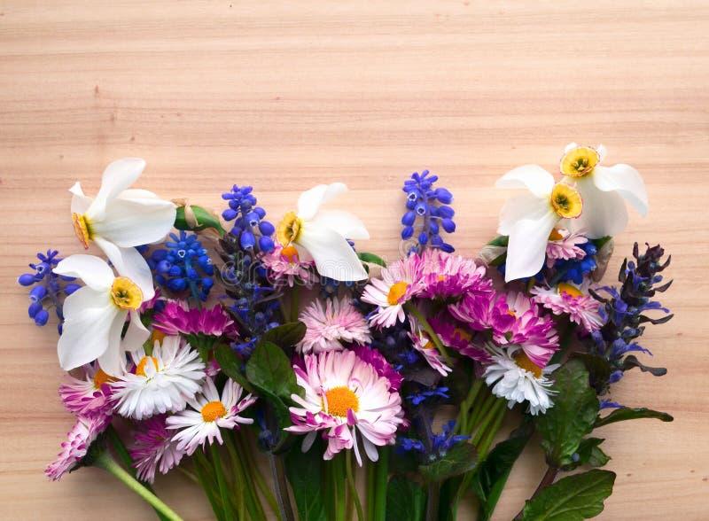 wiosna kwiat ' zdjęcia stock