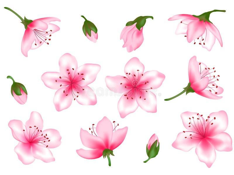Wiosna kwiatu drzewnego okwitnięcia ilustracji wektorowy set ilustracji