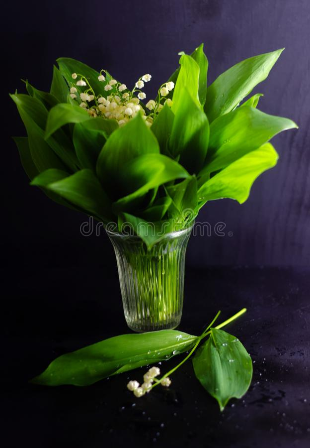 Wiosna kwiaty i leluja dolina opuszczają na czerni zdjęcia royalty free