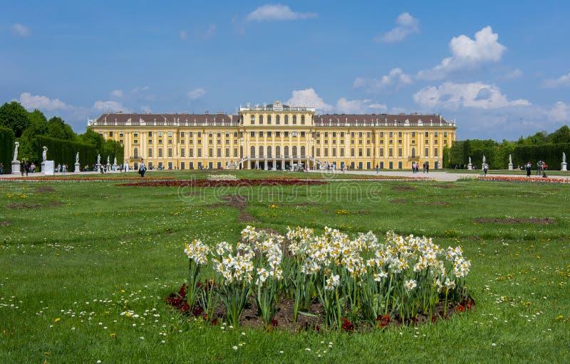 Wiosna kwiaty w Schonbrunn uprawiają ogródek, Wiedeń, Austria obraz stock