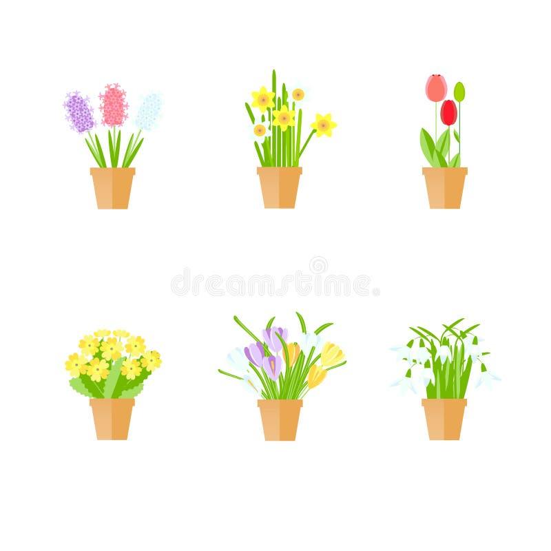 Wiosna kwitnie w garnku Płaskiego projekta czerwoni tulipany, białe śnieżyczki, żółty pierwiosnek ilustracja wektor