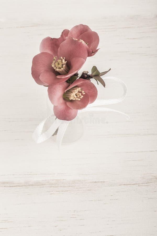 Wiosna kwitnie w wazie na drewnianym stole zdjęcie royalty free