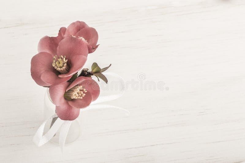 Wiosna kwitnie w wazie na drewnianym stole fotografia royalty free