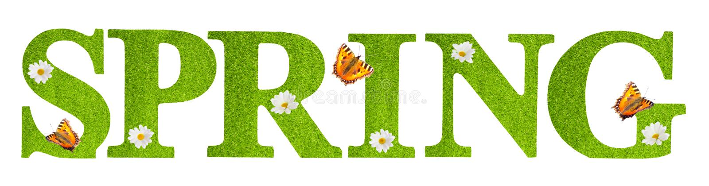 Wiosna motyle obraz royalty free