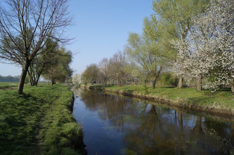 Wiosna nastrój na rzecznym Niers blisko Grefrath oedt zdjęcie stock