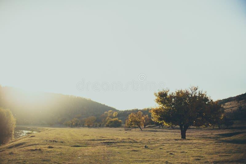 Wiosna panoramiczny krajobraz Cudowny miejsce fotografia royalty free