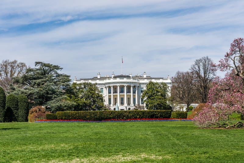 Wiosna przy Białym domem zdjęcie royalty free