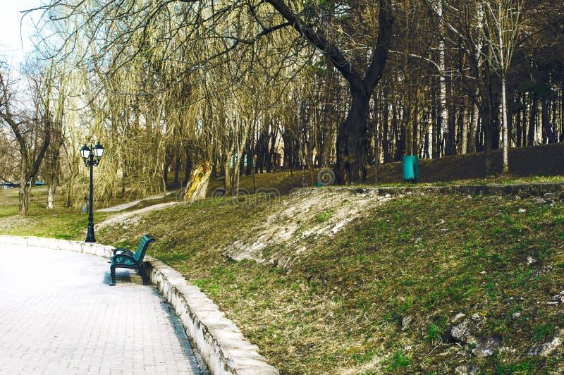 Wiosna przychodził w starym parku fotografia royalty free