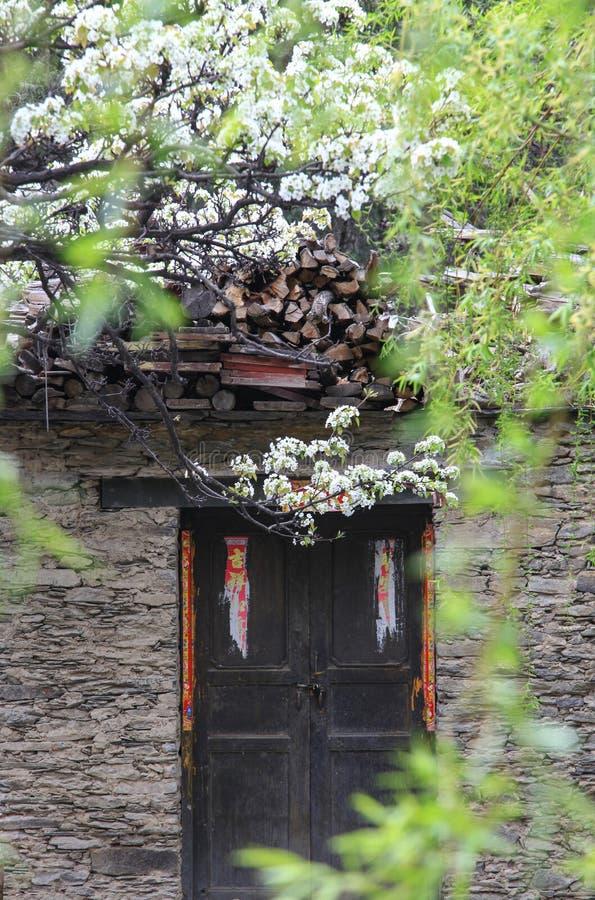 Wiosna przychodzi normalna wioska w prowincja sichuan Chiny fotografia royalty free