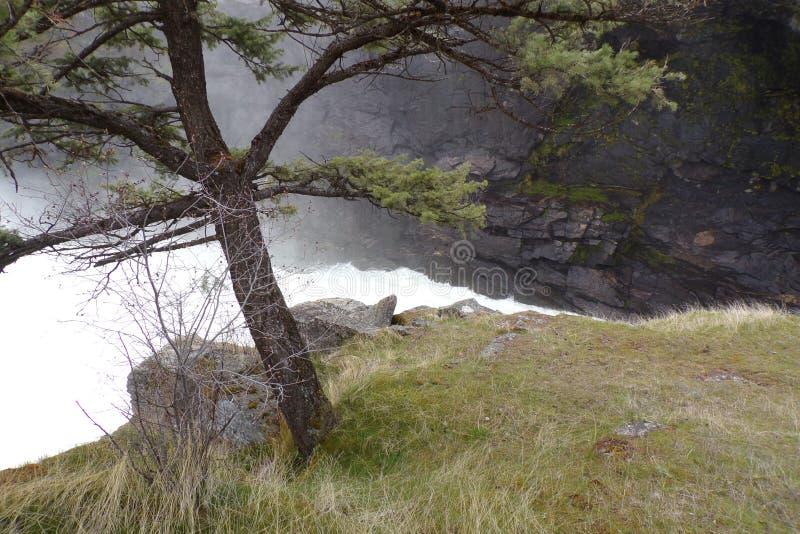 Wiosna spływ Rzeczny gnanie Przez jaru zdjęcia royalty free