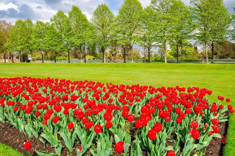 Wiosna w ogrodzie Hampton Court, Londyn, Zjednoczone Królestwo zdjęcie stock