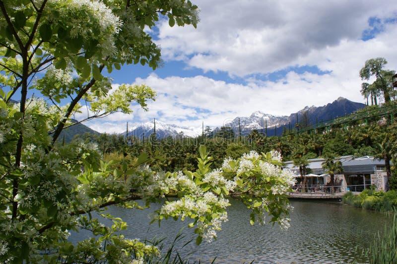 Wiosna w Południowym Tyrol, Włochy obraz stock