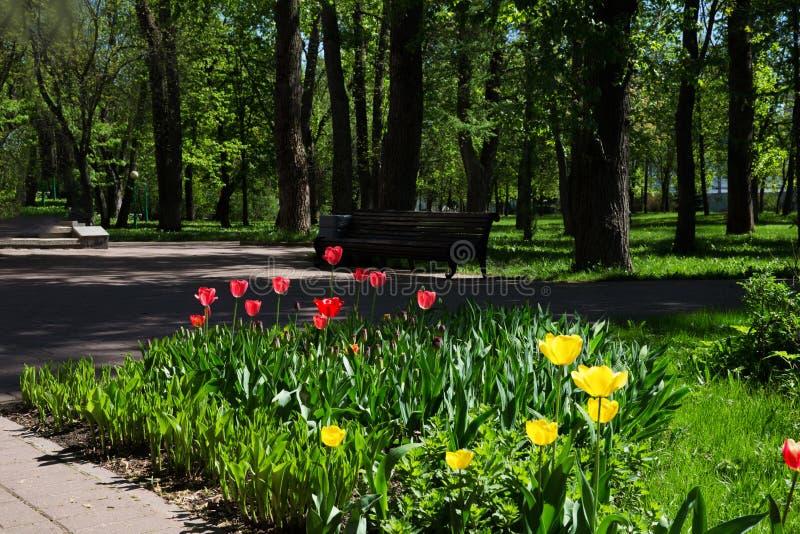 Wiosna w russia zdjęcie stock