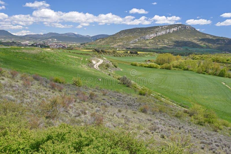 Wiosna widok Hiszpański region Navarra zdjęcia royalty free